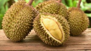 6 Manfaat Buah Durian Bagi Kesehatan
